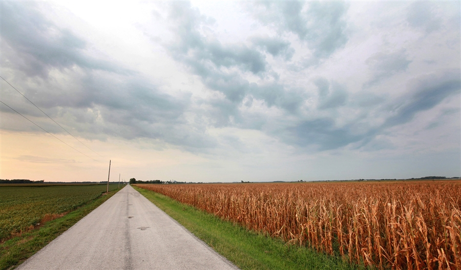 midwest drought Drought conditions are getting worse in several states, and extreme heat and weeks with little rain have begun to stress corn, soybeans, wheat and livestock in some areas.