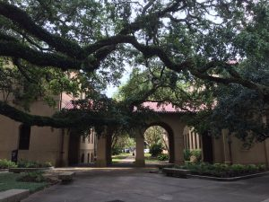 LSU Campus; Baton Rouge, Louisiana