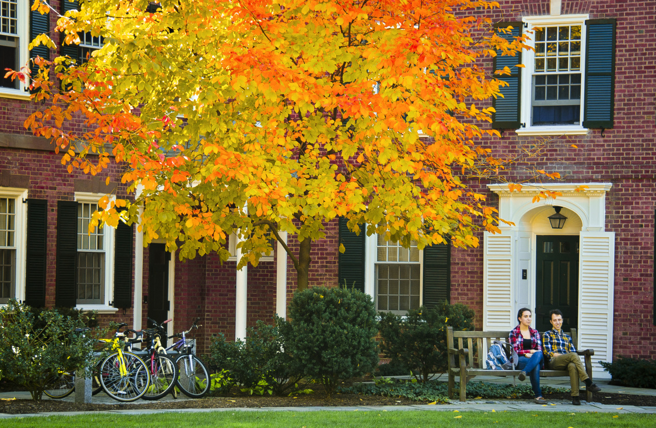Make It Stop: A Student's Plea for a Mandatory Fall Break