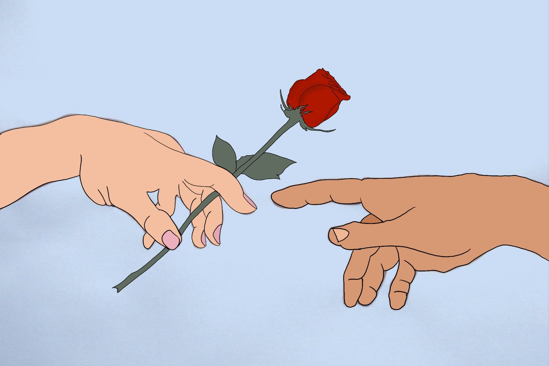 Illustration of the rose from the show The Bachelor